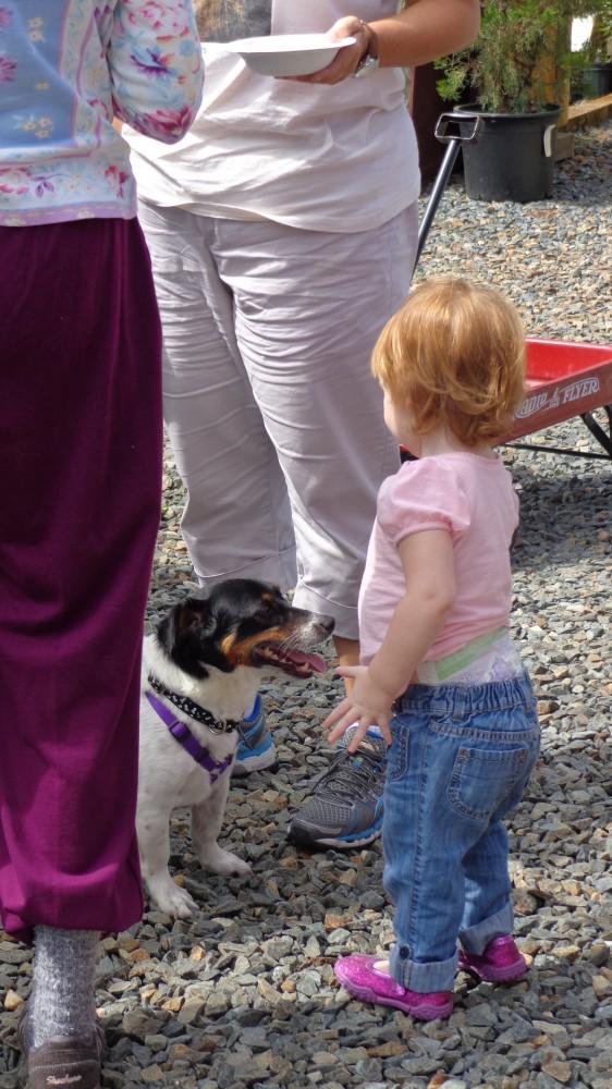 Fiona's new dog friend at the Adkins Arboretum on Shalavee.com