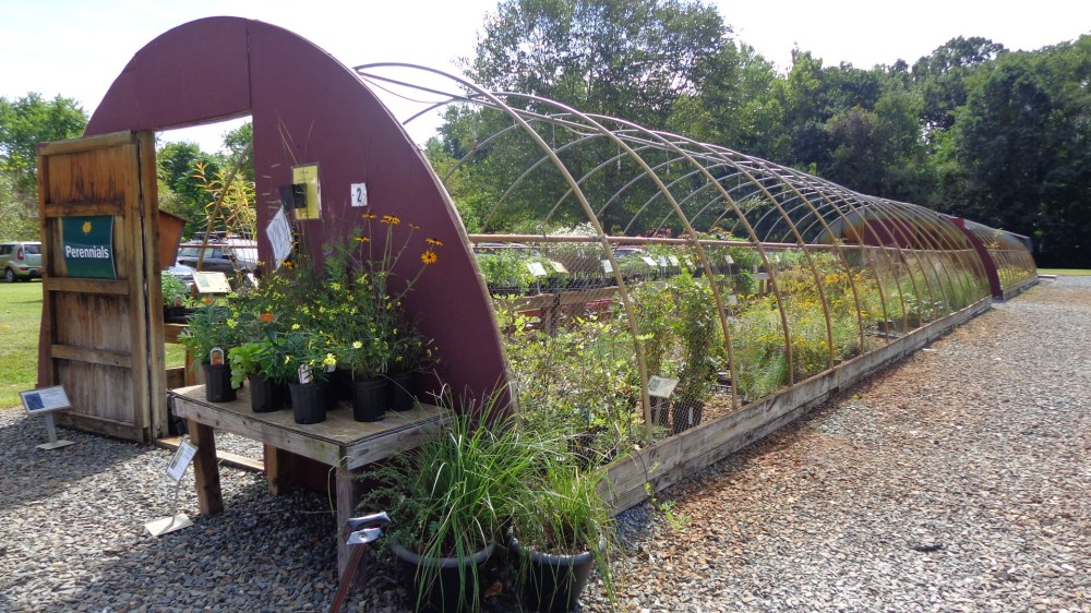native plant sale at the Adkins Arboretum on Shalavee.com