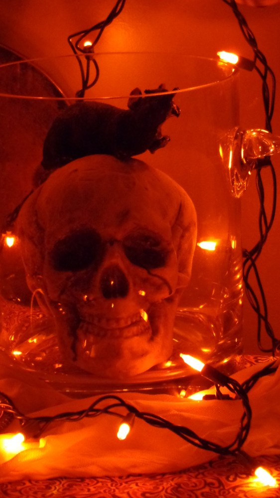 skull in ice bucket on Shalavee.com