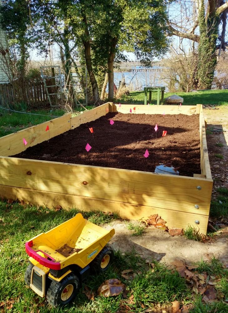 Mark's garden April 12 2015 on Shalavee.com