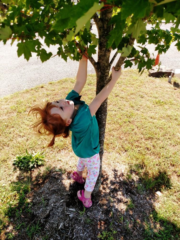 Fiona climbing a tree on Shalavee.com