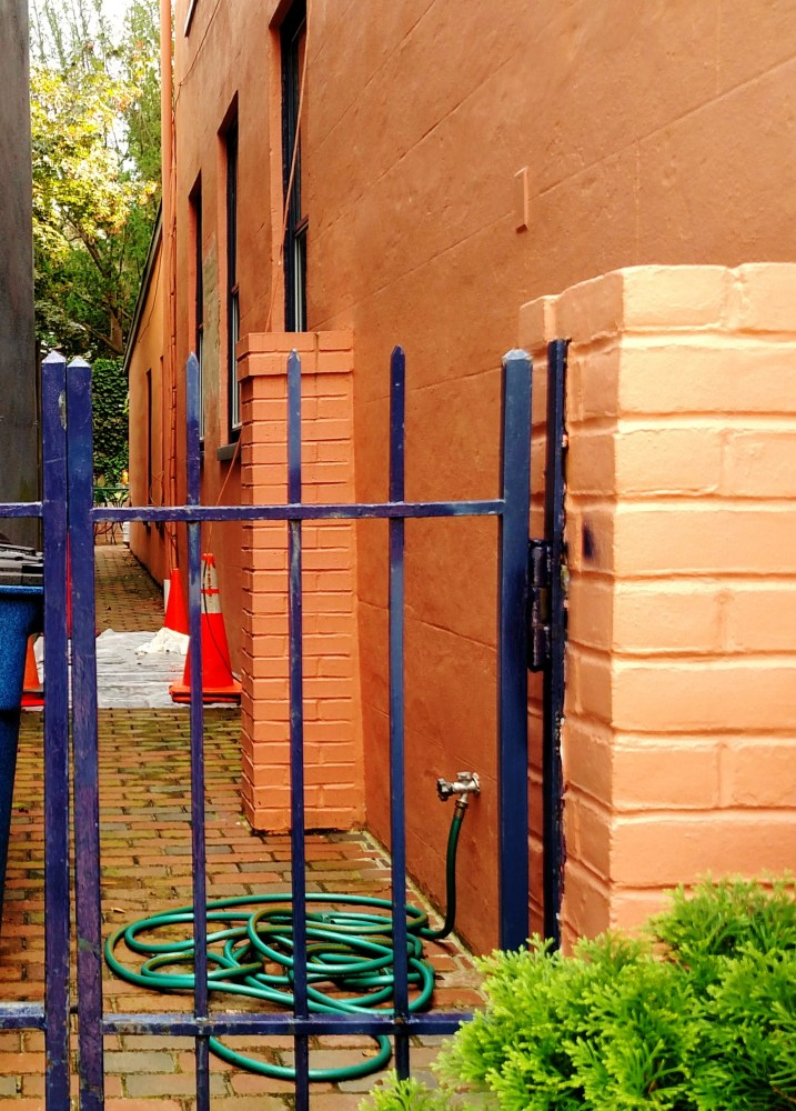 Cobalt gated alleyway with clay hued walls in Annapolis, MD on Shalavee.com