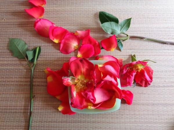 Roses 3 on Shalavee.com