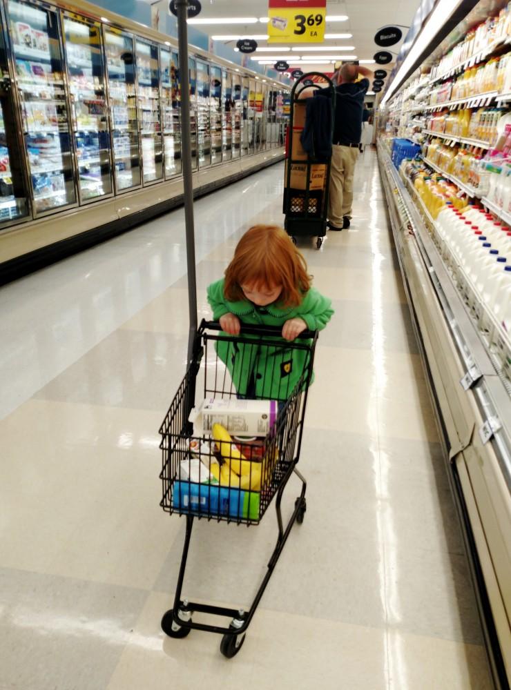 grocery shopping on Shalavee.com
