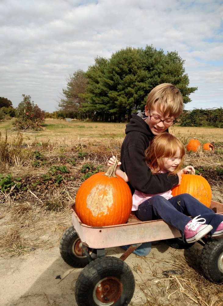 Eamon and Fiona in the pumpkin patch on Shalavee.com