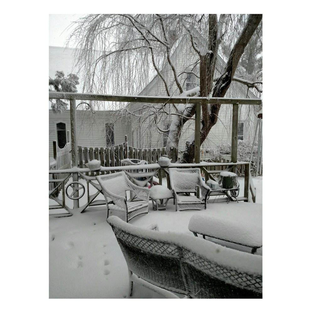 Snowday on Shalavee.com
