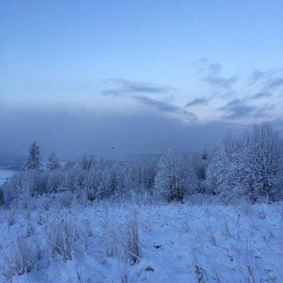 anna's snow world on Shalavee.com
