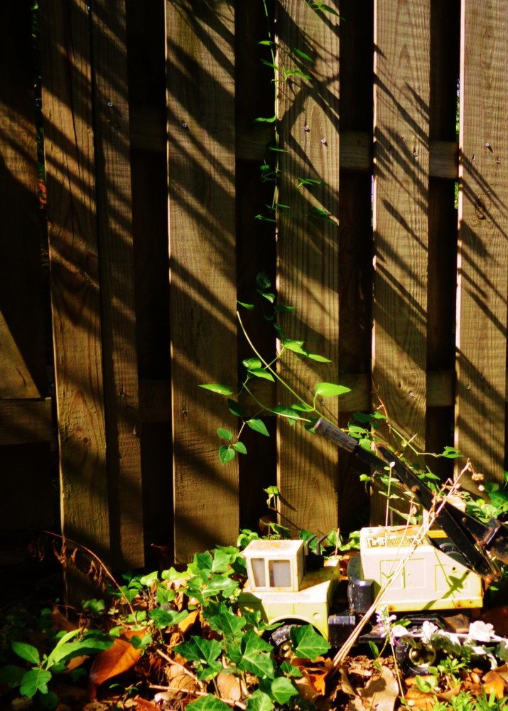 Garden Grief on Shalavee.com