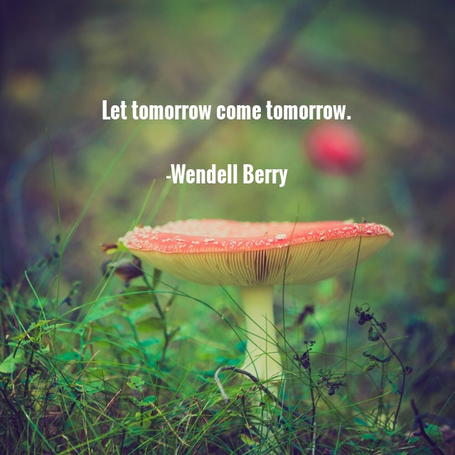 Quote_Berry