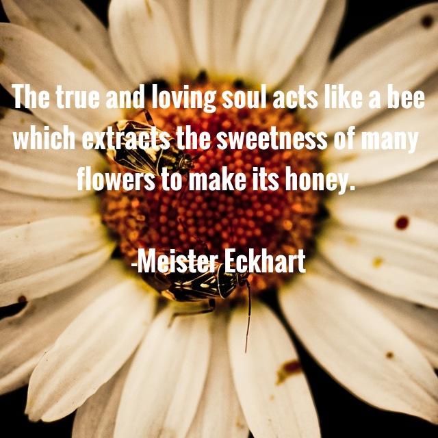 Quote_Eckhart