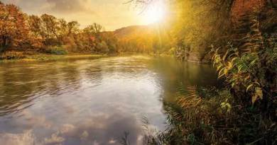 forest river in autumn mountains. lovely grassy shores with yellowed trees and rocky cliff. gorgeous nature autumnal scenery at sunset