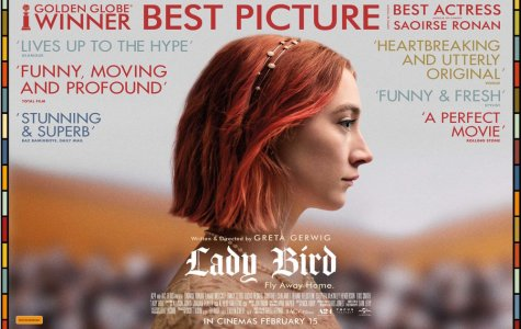 REVIEW: In 'Ladybird,' a teenager finds clarity in an old genre made new