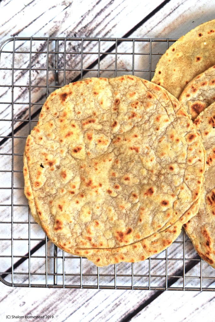 #grainfree tortillas #vegan #glutenfree