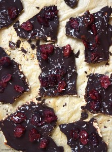 chocolate covered matzoh #vegan #grainfree #glutenfree