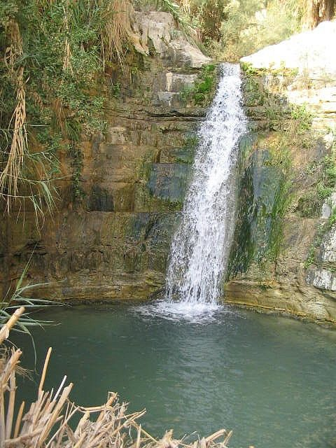 Visit the Rushing Waterfalls of Ein Gedi in the Middle of