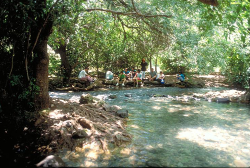 Enjoy The Outdoors Along The Dan River