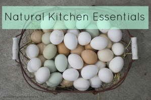 10 Natural Kitchen Essentials for Nourishing Meals