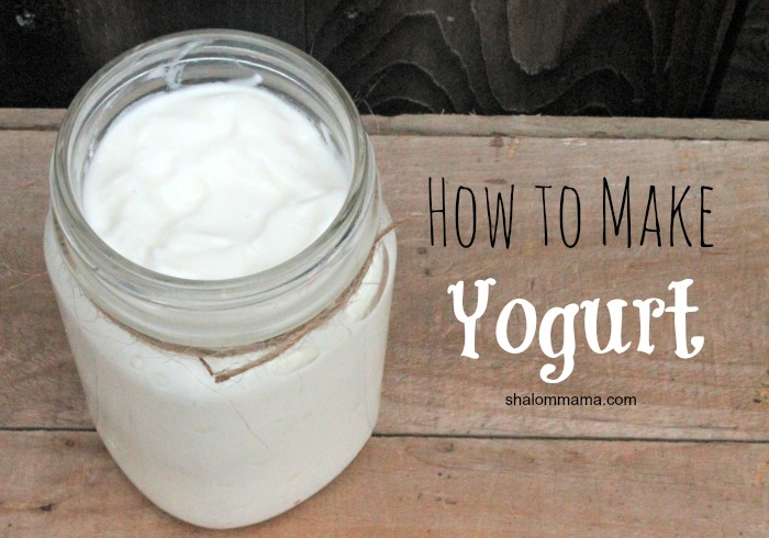 Image result for how to make yogurt