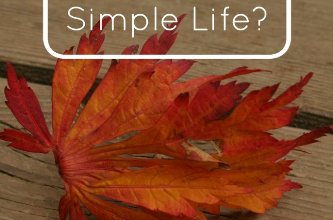 What Does It Take To Create A Simple Life?