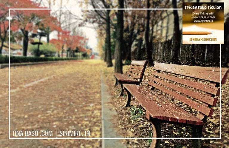 #fridayfotofiction-old man-bench-park-friday-foto-fiction-prompt-will-she-see-him-again