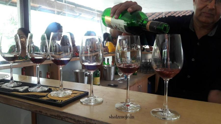 grape-stomping-vineyard-wine-tasting-sommelier-bangalore-heritage-sula-ramnagar-channapatna-sangria-girl-gang-A2Z-BADGE-2017-blogging-challenge-theme-reveal-travel-stories-picture-speaks-louder-than-words-april-shalzmojosays-