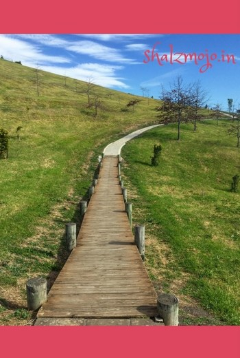 Secret-shalzmojosays-walkaway-monday-musings-thoughts-thinking-brain-mind-blogging