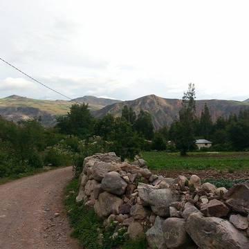 Merav Artzi