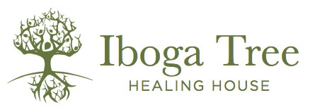 Iboga Tree – Healing House