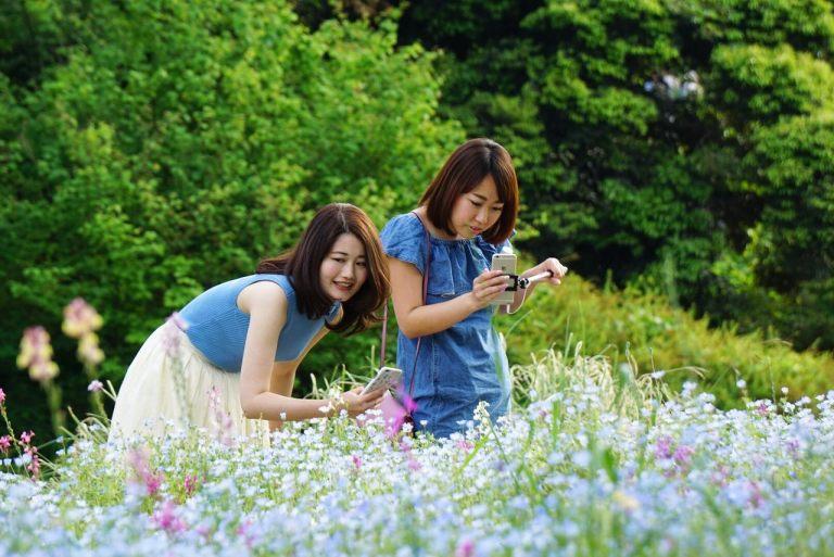 Японки, гармонирующие с цветами.