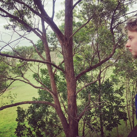 Picture of girl looking over paddock and tree.