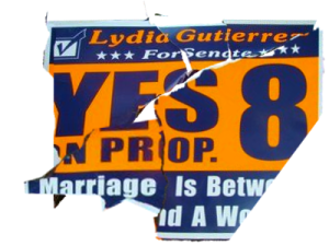Lydia Gutierrez for State Senate and Proposition 8 - assembled