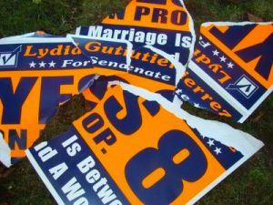 Lydia Gutierrez for State Senate and Proposition 8 - ripped