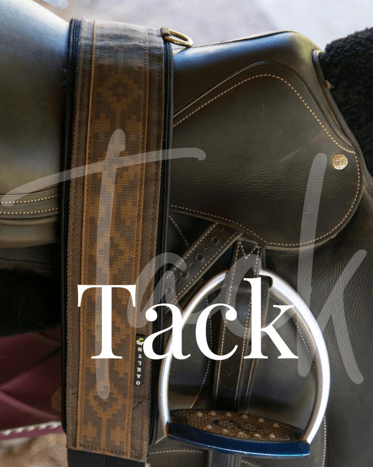 Equestrian Tack, American Equus, Oaklyn Tack