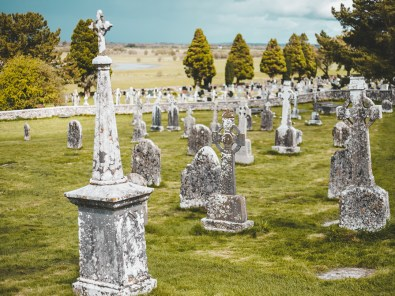 Alter Friedhof mit Blick auf den Shannon | Old graveyard with view onto the Shannon river