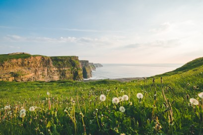 Die berühmten Cliffs of Moher am Abend | The famous Cliffs of Moher in the evening