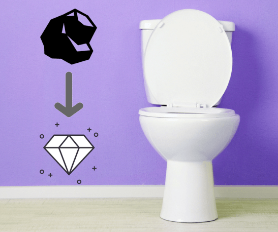 Gravity vs Pressure-Assisted Toilets | Shamrock Plumbing