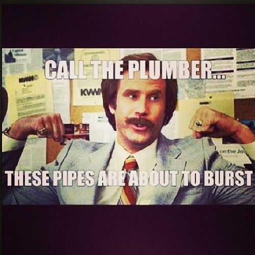 """Meme of Anchorman saying """"Call the plumber...these pipes are about to burst"""" while flexing his biceps."""