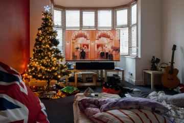 photo of christmas tree near window