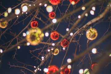 bare tree with glossy christmas toys and lights against dark sky