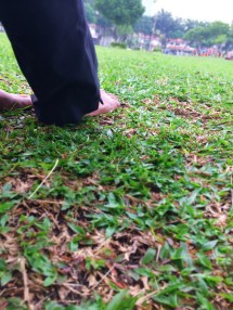 Benefits of Walking Barefoot On Grass