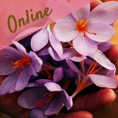 spirituel samtale og undervisning online