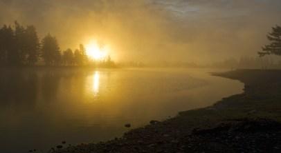 Mt. Rainier early fog.