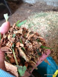 holding mulch brush box