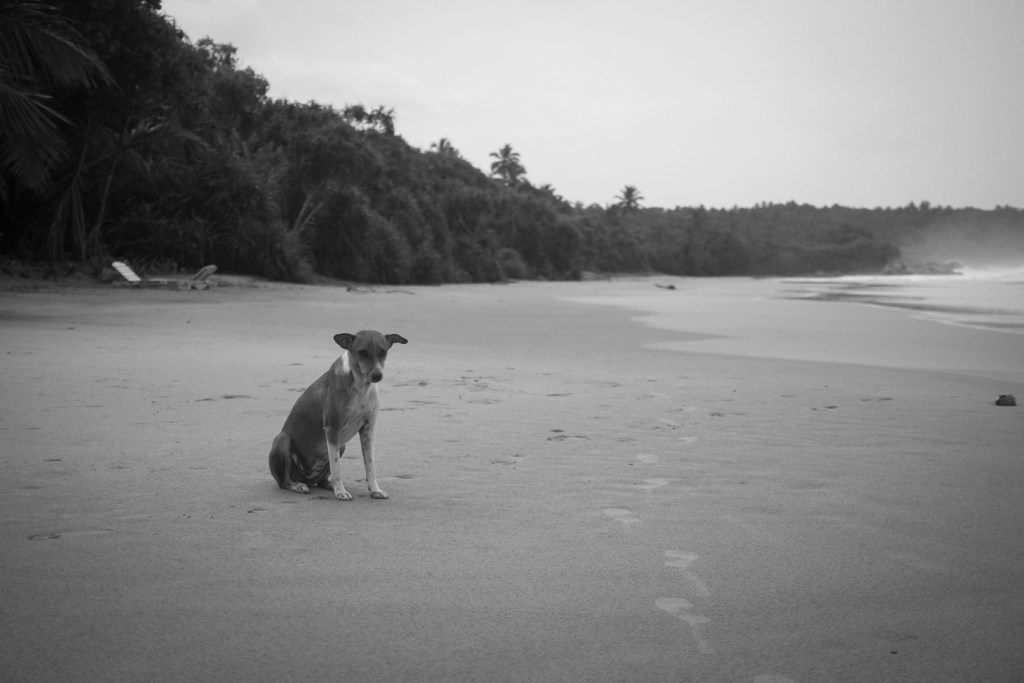 Deserted Tangalle beach, Sri Lanka