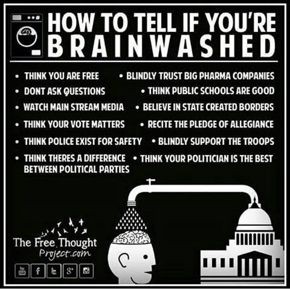 How To Tell If You Are Brainwashed?  Shane  Laura  Allyssa