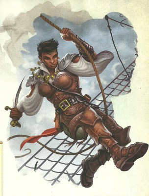 d&d volos guide to monsters swashbuckler