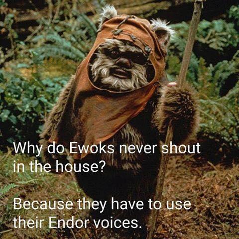 geek meme endor voices