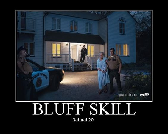 d&d meme bluff skill natural 20