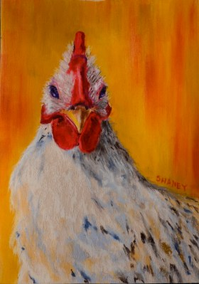 Chicken - SOLD