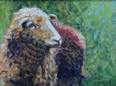 Sheep Painting